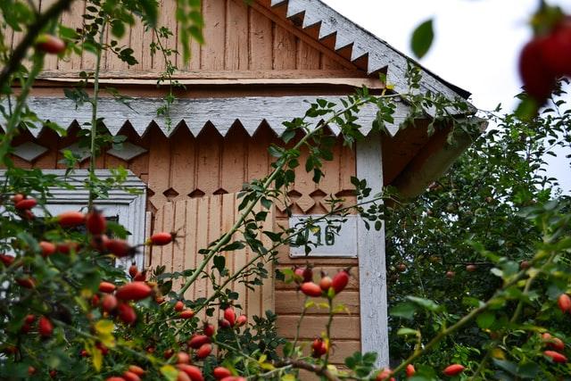 Dom szkieletowy – jakie są etapy budowy domu drewnianego? Które są kluczowe?